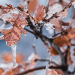 droge-huid-winter-tips